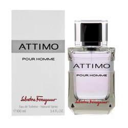Salvatore Ferragamo Attimo Pour Homme EDT Perfume Spray