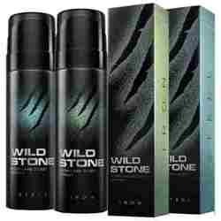Wild Stone Iron And Steel Pack Of 2 No Gas Deodorant For Men